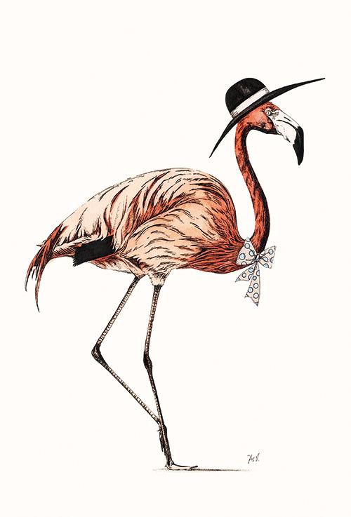 Flamingo Ⅷ