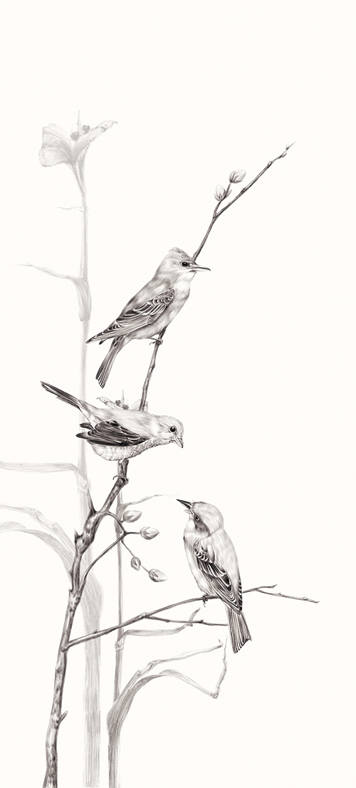 Birds On Branch Ⅳ
