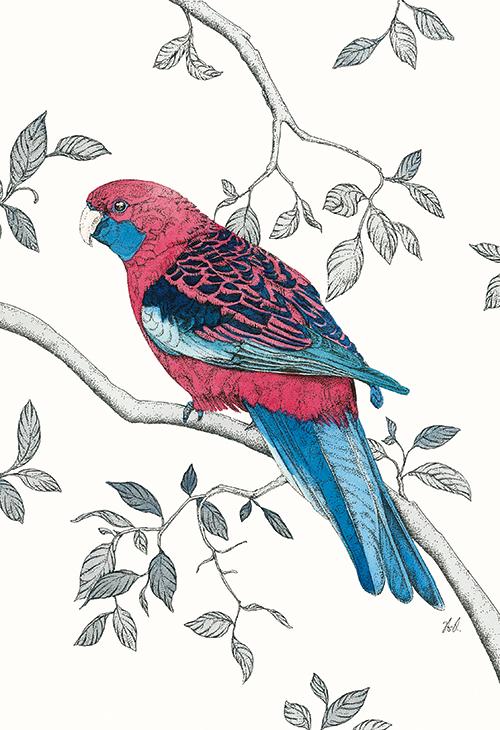 Avian Paradise II