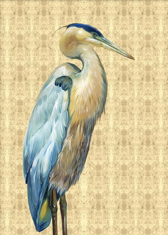 Glory Bird  I