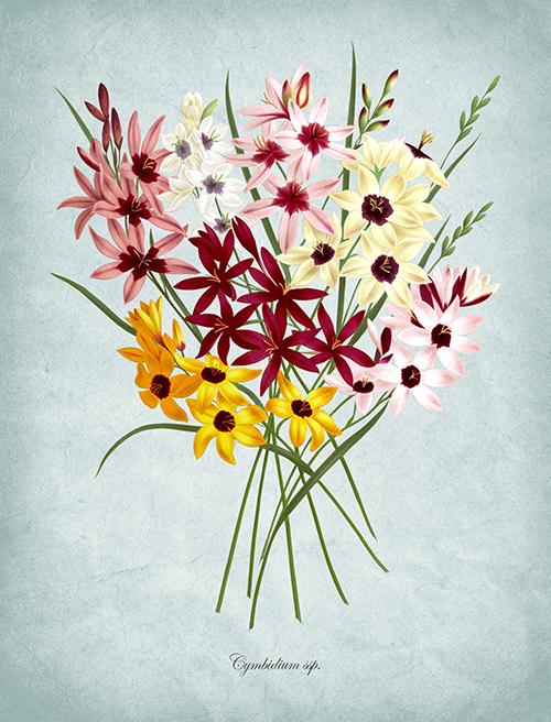 Flowers Bloom Ⅱ