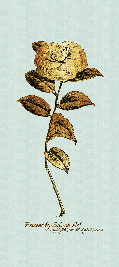 Gold Botanicals Ⅰ
