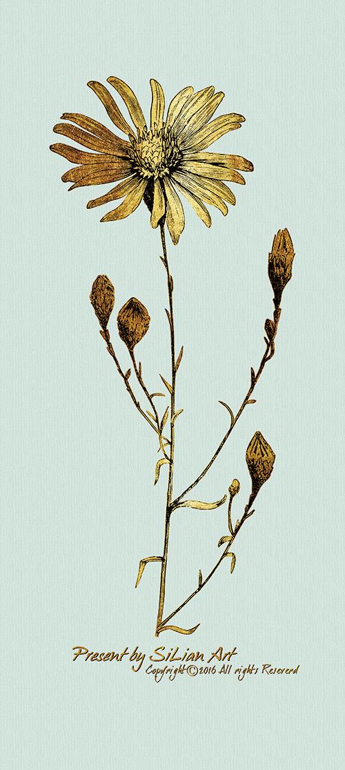 Gold Botanicals Ⅵ