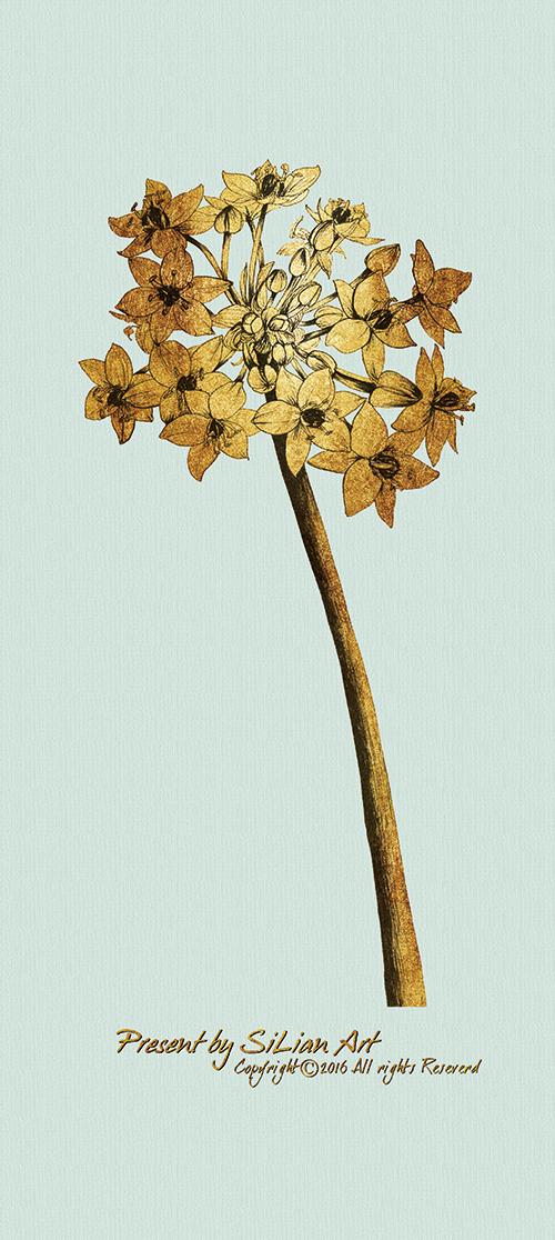 Gold Botanicals Ⅲ