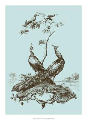 Avian Toile Ⅱ