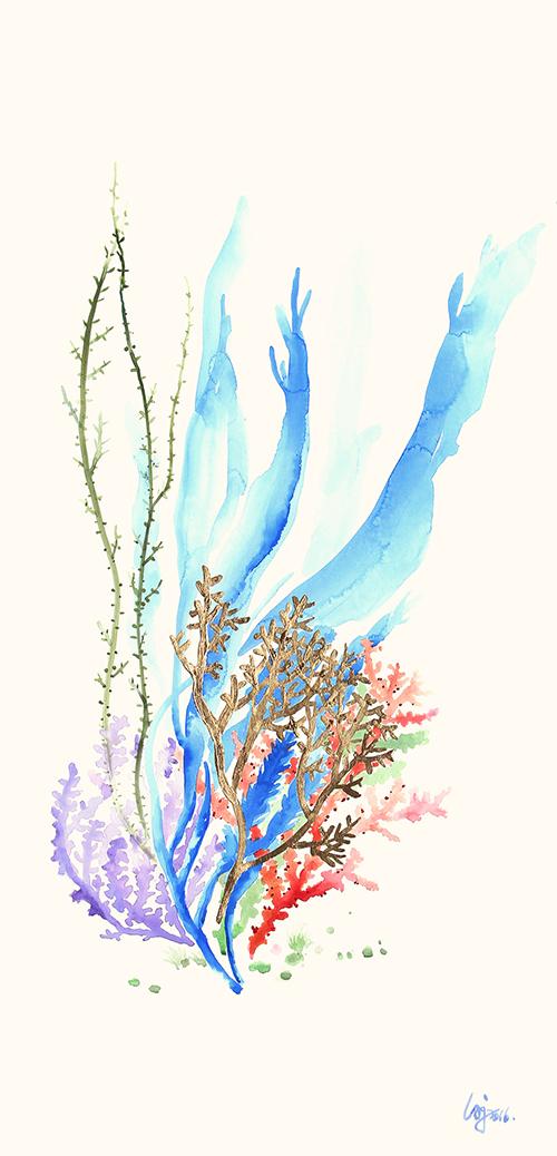 Colored Coral Ⅱ