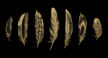 Golden Feather I
