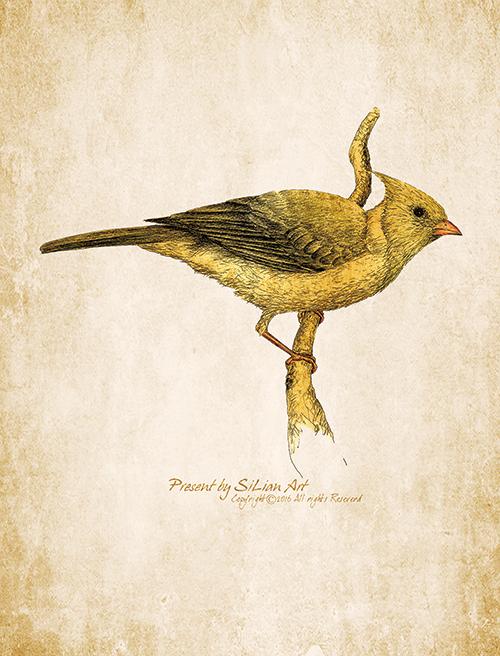 Lively Bird Ⅳ