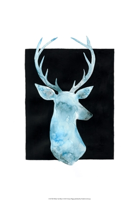 White Tail Bust I