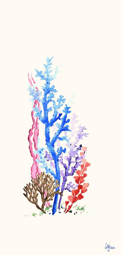 Colored Coral Ⅲ