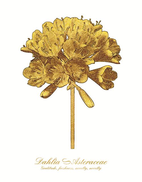 Golden Flower Ⅳ