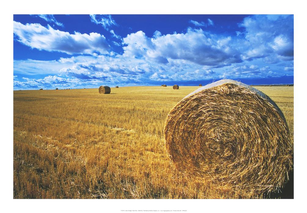 Hay & Sky