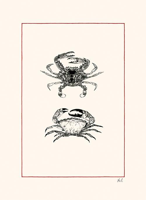 Crustaceans Ⅱ