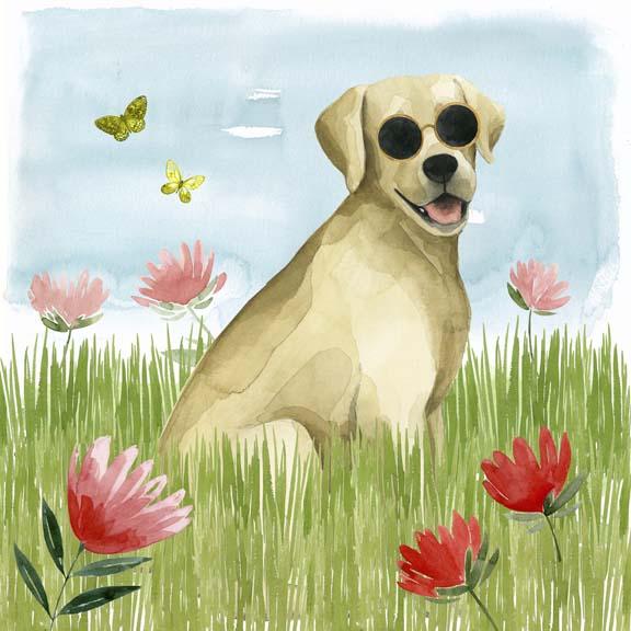Park Pup II