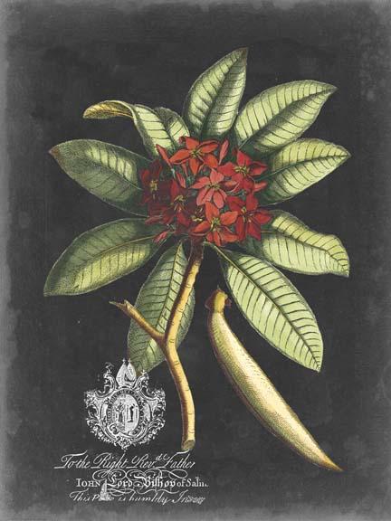Royal Foliage III