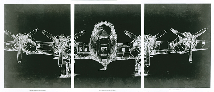 Graphic Plane Triptych