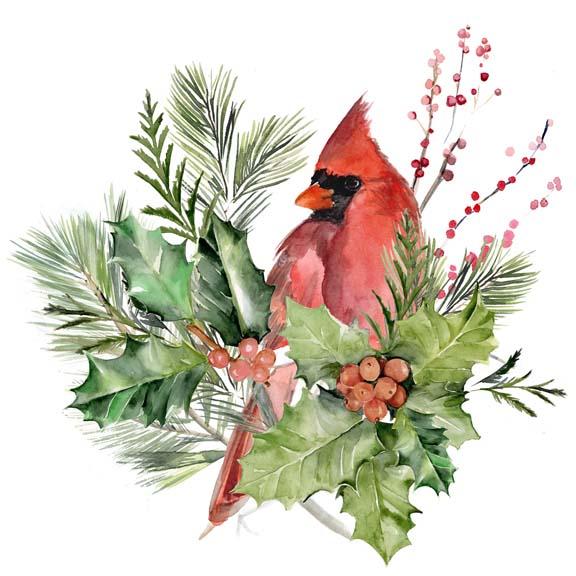 Cardinal Holly Christmas  I
