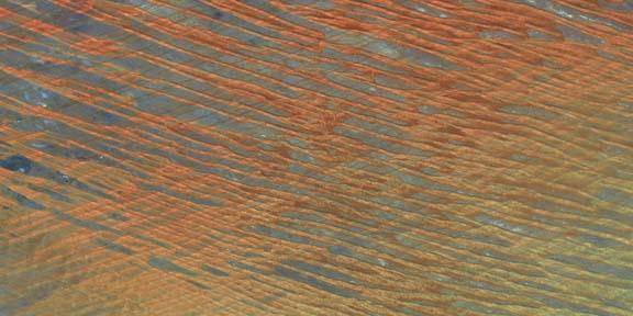 Desert Patterns I