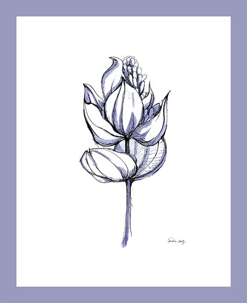 Sketch of flowers Ⅱ