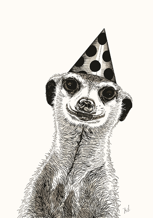 The Mongoose in a Hat