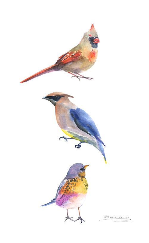 Mini Vintage Birds Ⅳ