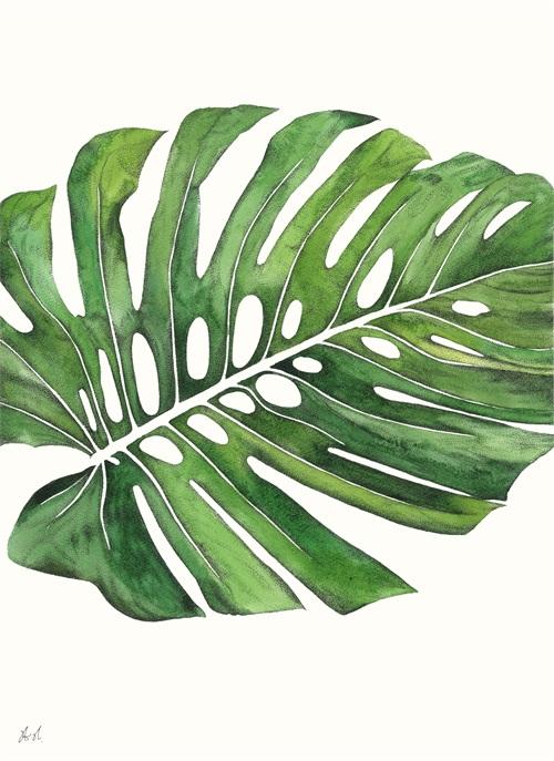 Palm Pieces I
