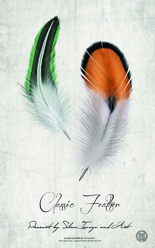 Classic Feather Ⅱ