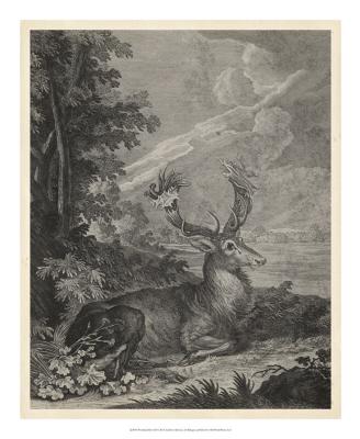 Woodland Deer III