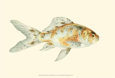 Speckled Goldfish