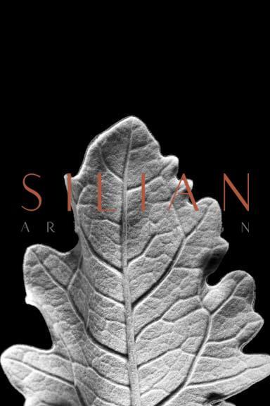 Striking Leaf IV