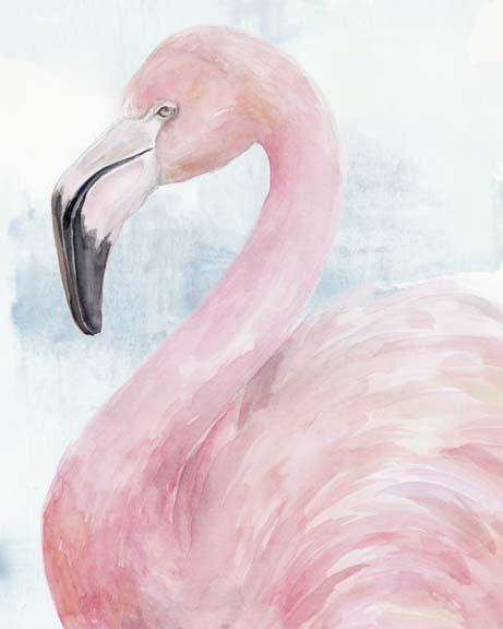 Pink Flamingo Portrait II