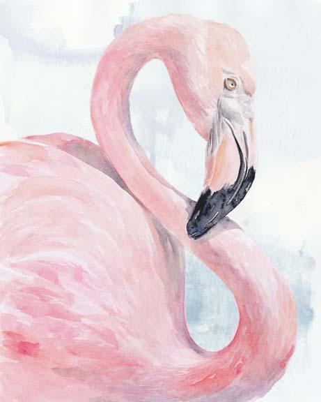 Pink Flamingo Portrait I