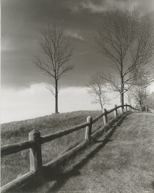 Fences and Trees, Empire,