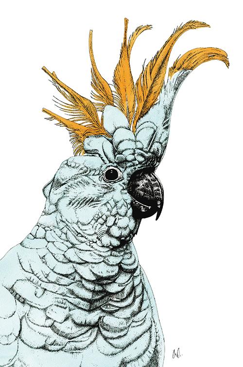 Tropical Parrot Ⅳ