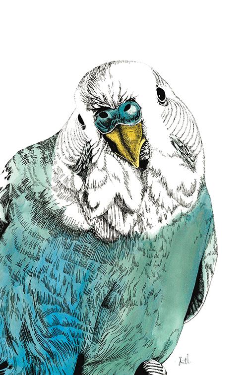 Eagle Portrait Ⅱ