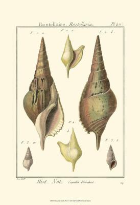 Pyrule Shells
