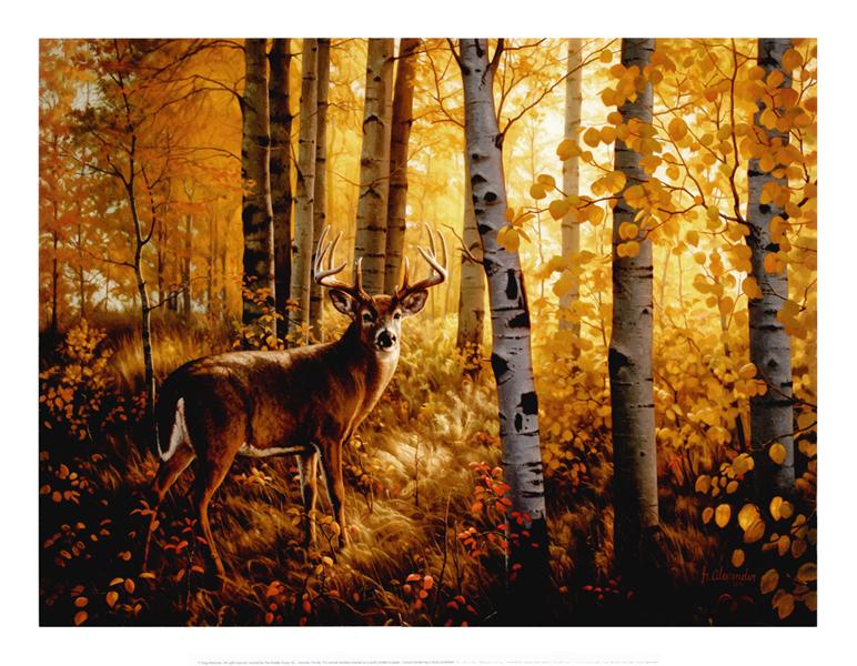 Deer in Popples