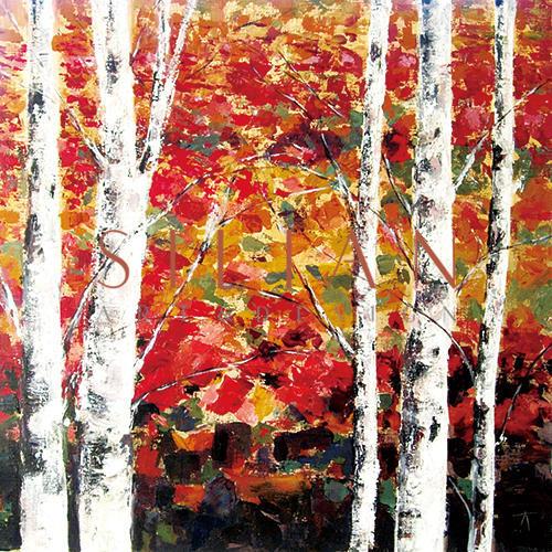 The Autumn Birches