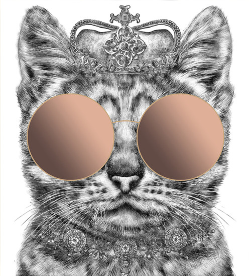 Call Yourself A Cool Cat