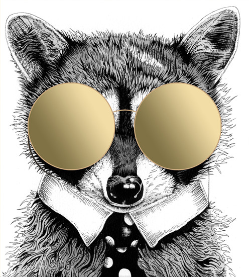 Call Yourself A Cool Coon