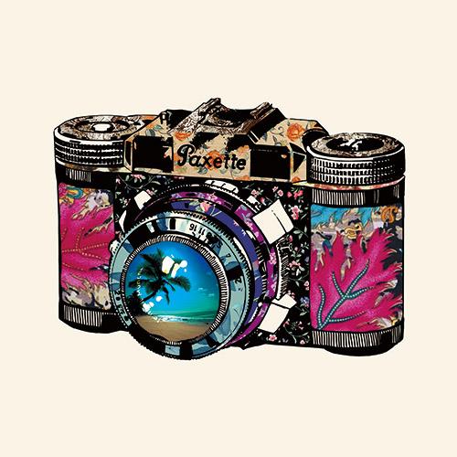 Vintage Camera Ⅲ