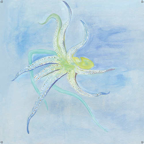 Blue Ocean Ⅱ