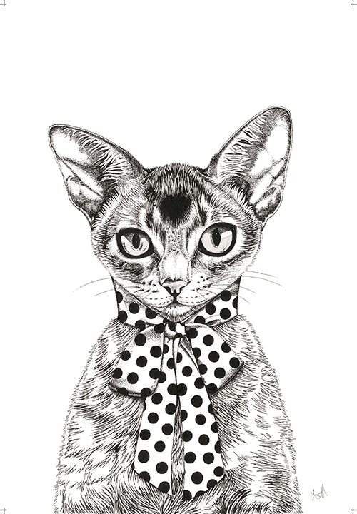 A Cat Wearing A Scarf