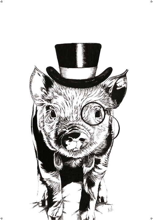 A Pig With Hat