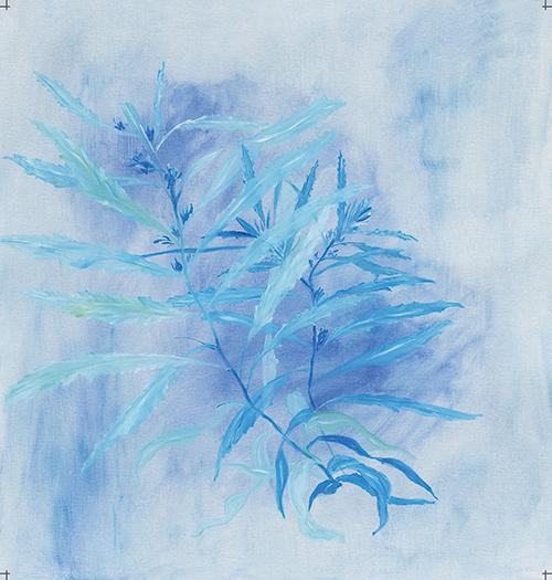 Blue Ocean XIII