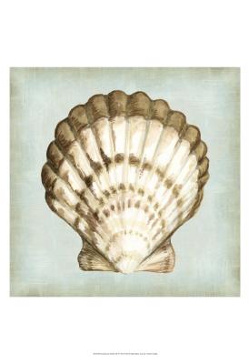Sea Dream Shells I
